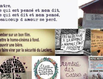Les z'images au 03/01/21